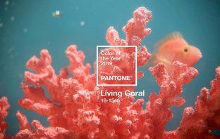 Pantone 2019'un Rengini Açıkladı1
